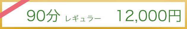 90分コース12.000円